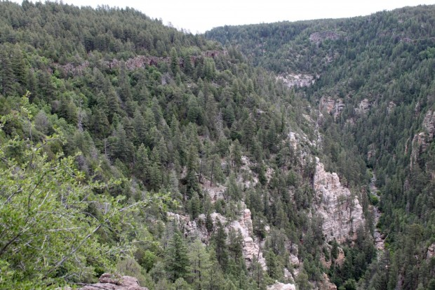 Took Oak Creek Canyon Drive to Flagstaff. Beautiful.