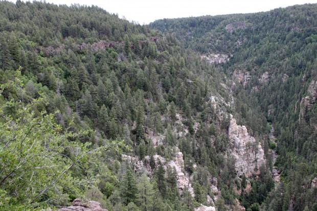Took Oak Creek Canyon Drive to Flagstaff. Beautiful.